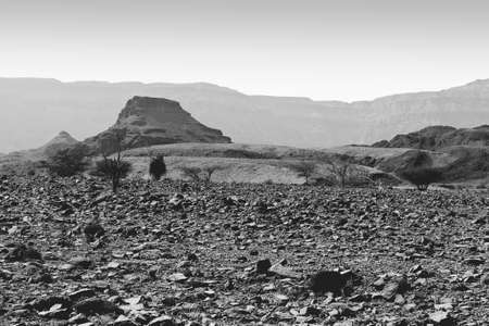 Loneliness and emptiness of the rocky hills of the Negev Desert in Israel. Breathtaking landscape and nature of the Middle East. Black and white photo