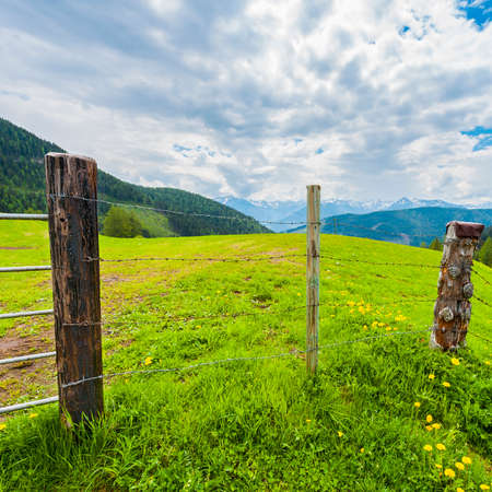 Pasture fenced with barbed wire in the Austrian alps on the background of snow-capped peaks. Banque d'images - 106247601