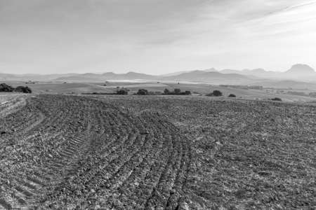 Fields in Spain after harvesting at sunrise. Breathtaking landscape and nature of the Iberian Peninsula. Black and white photo