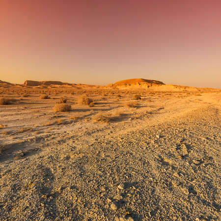 Colorful rocky hills of the Negev Desert in Israel. Breathtaking landscape and nature of the Middle East at sunset