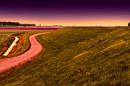 Agriculture on land reclaimed from the see in Netherlands at sunset. Asphalt road along protective dam and canal in Holland Stockfoto
