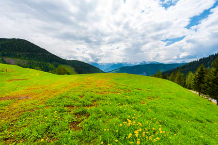 Austrian landscape with forests, fields, pastures and meadows on the background of snow-capped Alps
