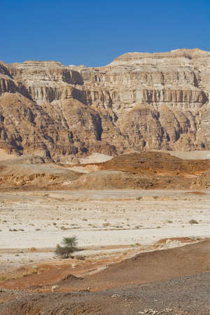 Infinite fantasy of the rocky hills of the Negev Desert in Israel. Breathtaking landscape and nature of the Middle East.