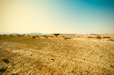 Impresionante paisaje de las formaciones rocosas en el desierto de Israel. Montañas polvorientas interrumpidas por wadis y cráteres profundos. Desierto de estilo vintage