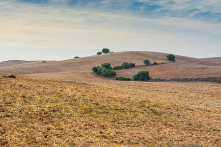Autumn fields in Spain after harvesting. Breathtaking landscape and nature of the Iberian Peninsula