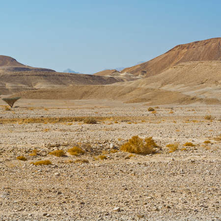 Loneliness and emptiness of the rocky hills of the Negev Desert in Israel. Breathtaking landscape and nature of the Middle East.