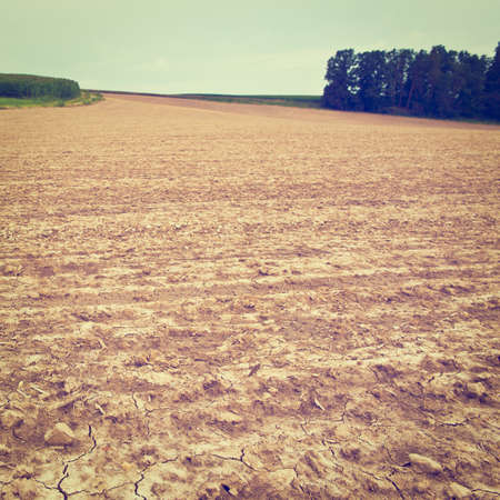 Freshly Plowed Field  Ready for Cultivation in Germany