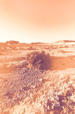 Breathtaking landscape of the rock formations in the Israel desert at dawn in a contemporary style. Lifeless and desolate scene as a concept of loneliness, hopelessness and depression.