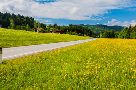 Asphalt road in Austrian landscape with forests, fields, pastures and meadows