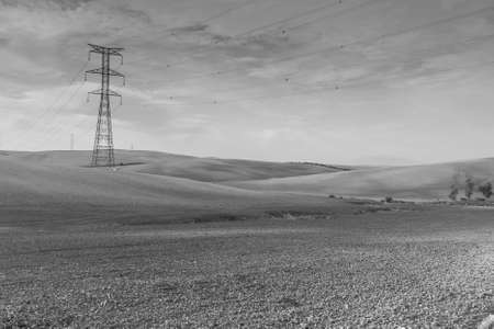Olive grove and fields in Spain after harvesting at sunrise. Electrical power lines on pylons in the landscape of the Iberian Peninsula. Black and white photo