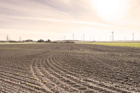 Plowed fields in Austrian landscape with modern wind turbines producing energy at sunrise 版權商用圖片