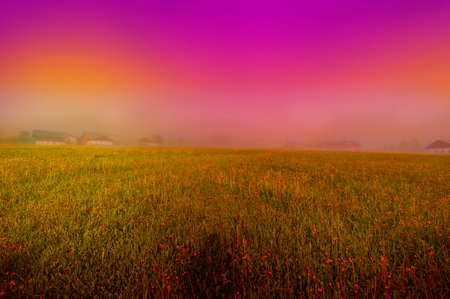 Morning mist over the Austrian landscape with forests, fields, pastures and meadows at sunset 免版税图像