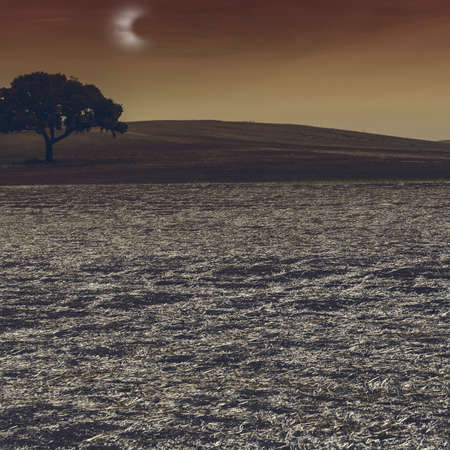 Fields in Spain after harvesting in the light of the moon. Breathtaking landscape and nature of the Iberian Peninsula 免版税图像