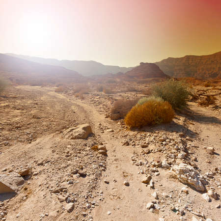 Loneliness and emptiness of the rocky hills of the Negev Desert in Israel. Breathtaking landscape and nature of the Middle East. Foto de archivo