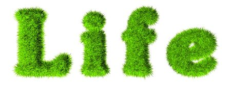 Life - High resolution grass text  Stock Photo - 10072125