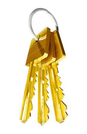 bunch of golden keys Stock Photo - 10018007