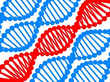 genom: DNA