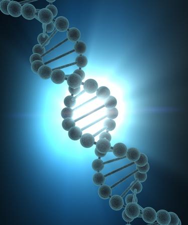 dna strands: DNA