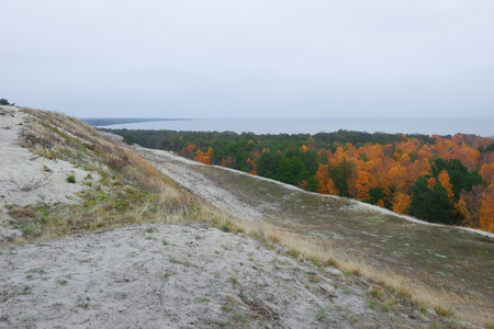 to spit: Curonian spit, vegetation of sand dunes in autumn Stock Photo