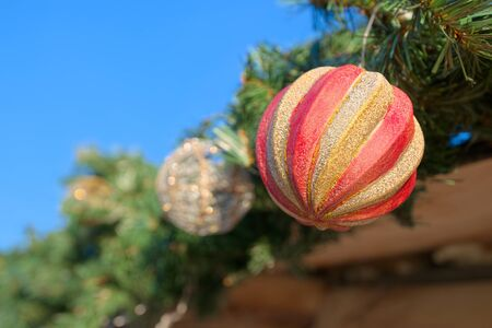 Christmas decoration, ball in spruce branch close up
