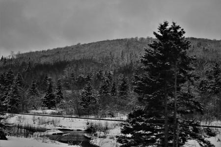 Train tracks in Antigonish County, Nova Scotia.