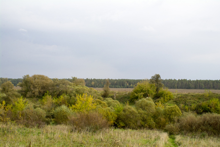 oka: Fields and forests in the fall in Central Russia, the upper reaches of the Oka River