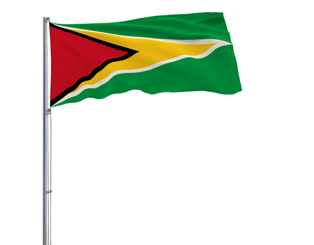 Flag of Guyana on the flagpole fluttering in the wind on white background, 3d rendering 스톡 콘텐츠