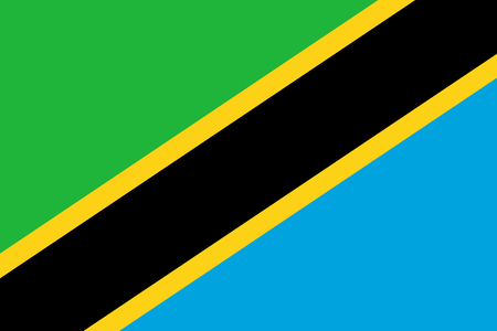 Flag in colors of Tanzania, vector image Illustration
