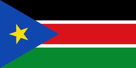Flag in colors of South Sudan, vector image