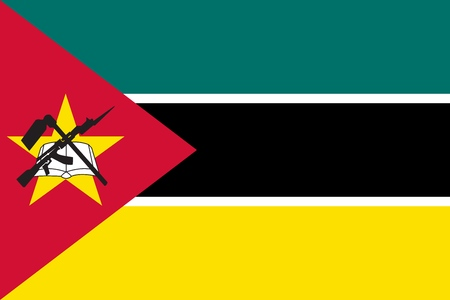 Flag in colors of Mozambique, vector image