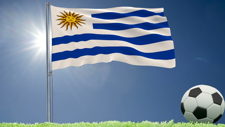 Flag of Uruguay fluttering and a football rolls on the lawn, 3d rendering Stock Photo