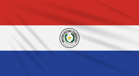 Flag Paraguay - front side swaying in wind, realistic vector.