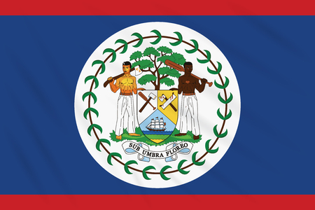 Flag Belize swaying in wind, realistic vector 向量圖像