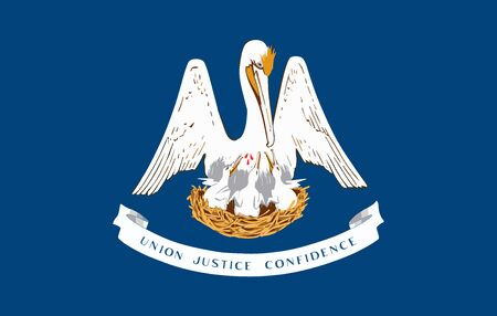 Louisiana State of America flag, vector image