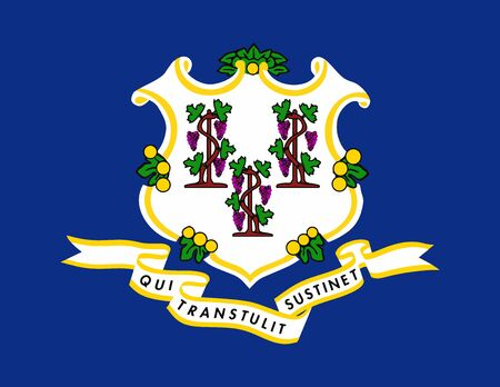 Connecticut State of America flag, vector image