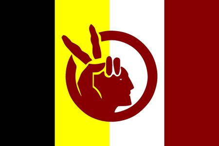 Flag of American Indian Movement in proportions and colors vector.