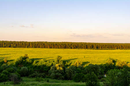 River, trees and fields in the afternoon sun. Archivio Fotografico
