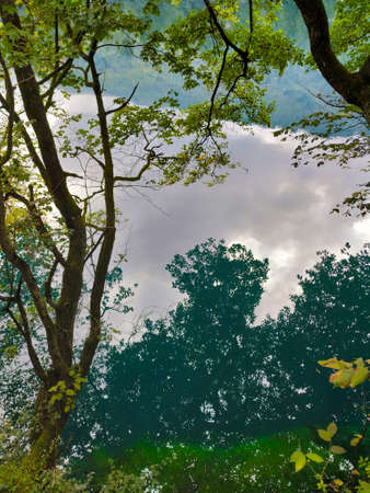 Reflection of clouds and trees in a mountain lake on a cloudy day