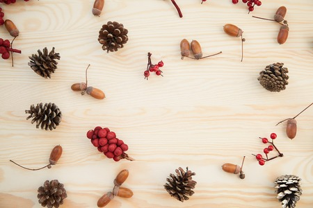 acorn: Christmas frame: cones, cinnamon, berries, acorn on the wood table