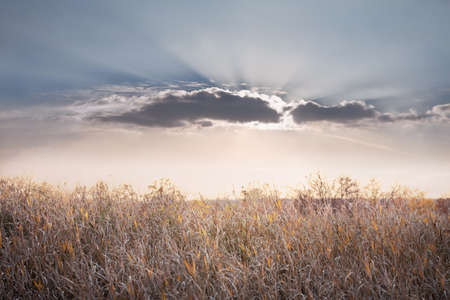Sun behind a cloud. Sun rays Stock Photo