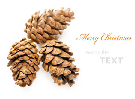 three Christmas cones isolated on white background with copy space for text  photo