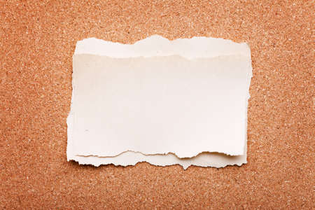 cork sheet: ripped piece of paper on cork board background