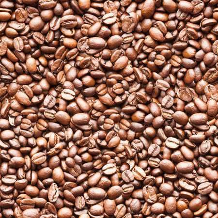 coffee harvest: seamless coffee background texture