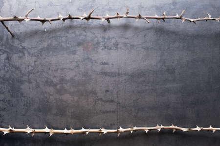 weerzinwekkend: Border van de stekende droge takken op metaal textuur achtergrond