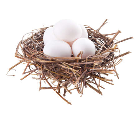 Nest with eggs isolated on a white background