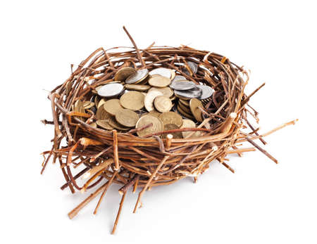 straw twig: Nest full of coins isolated on white background Stock Photo