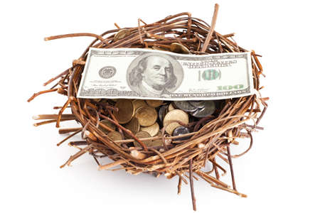 Dollar bills and coins in a birds nest isolated on white background photo