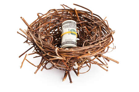 Roll of dollar bills in a birds nest isolated on white background photo