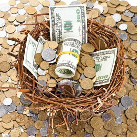 retirement nest egg: Nest egg overflowing with money