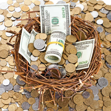 nest egg: Nest egg overflowing with money